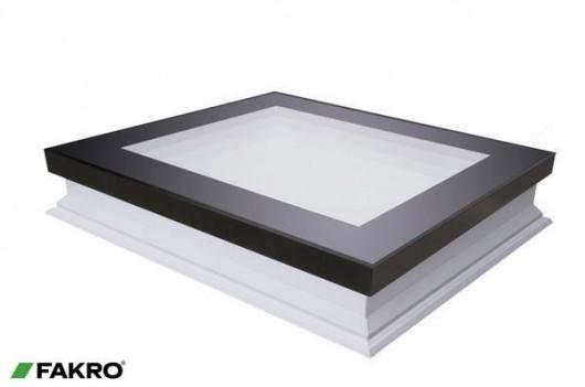 Flat Roof Access Window
