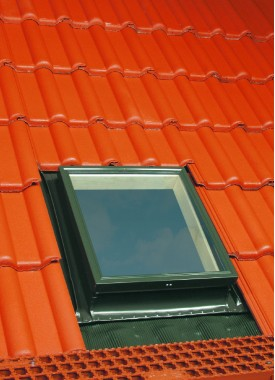 Access Roof Window